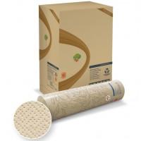 6 rotoli copri lettino massaggio Antibatterici Eco Lucart Top