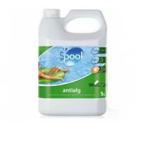 Antialghe Gre per piscine Intex, Bestway, Zodiac